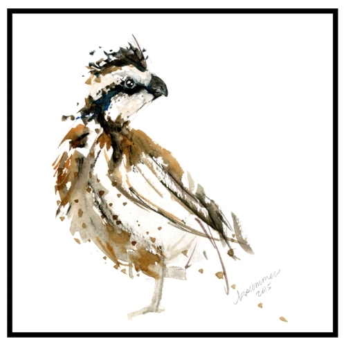 Northern bobwhite quail watercolor art print