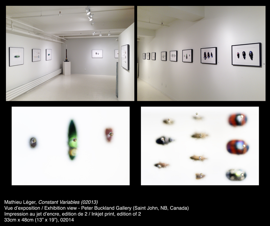 00MathieuLeger2014ConstantVariables02013ShowView.jpg