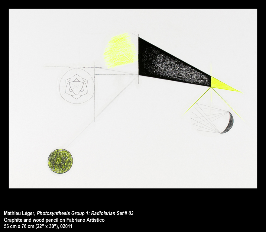 ML2011PhotoSynthesisGroup1-03WEB.jpg