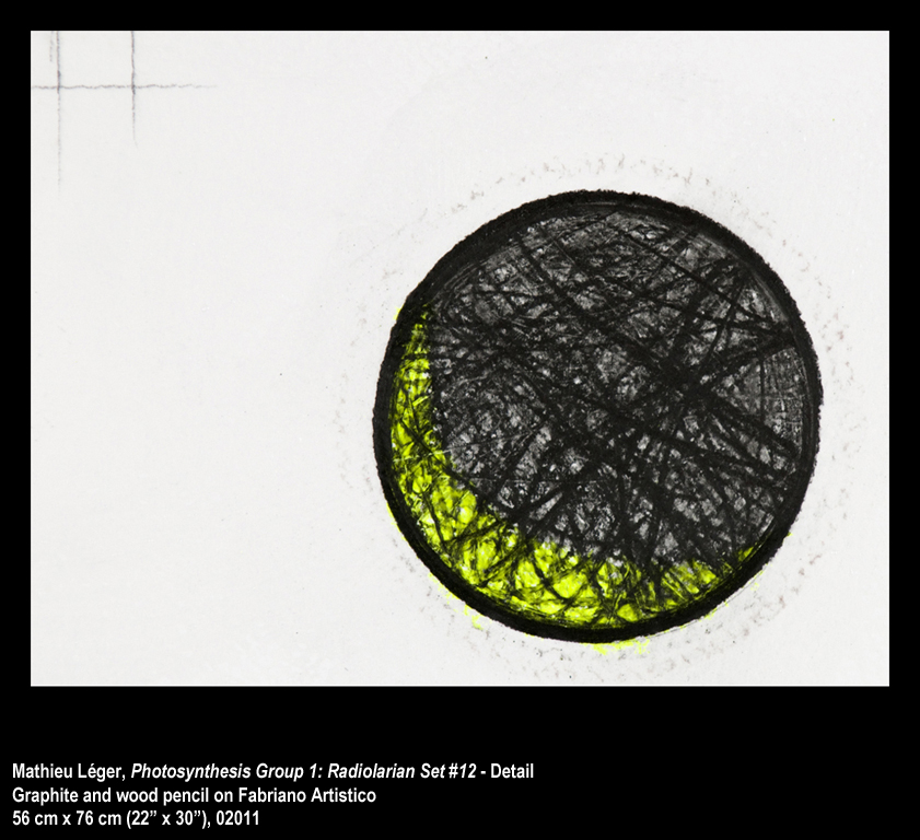 ML2011PhotoSynthesisGroup1-12Detail1WEB.jpg