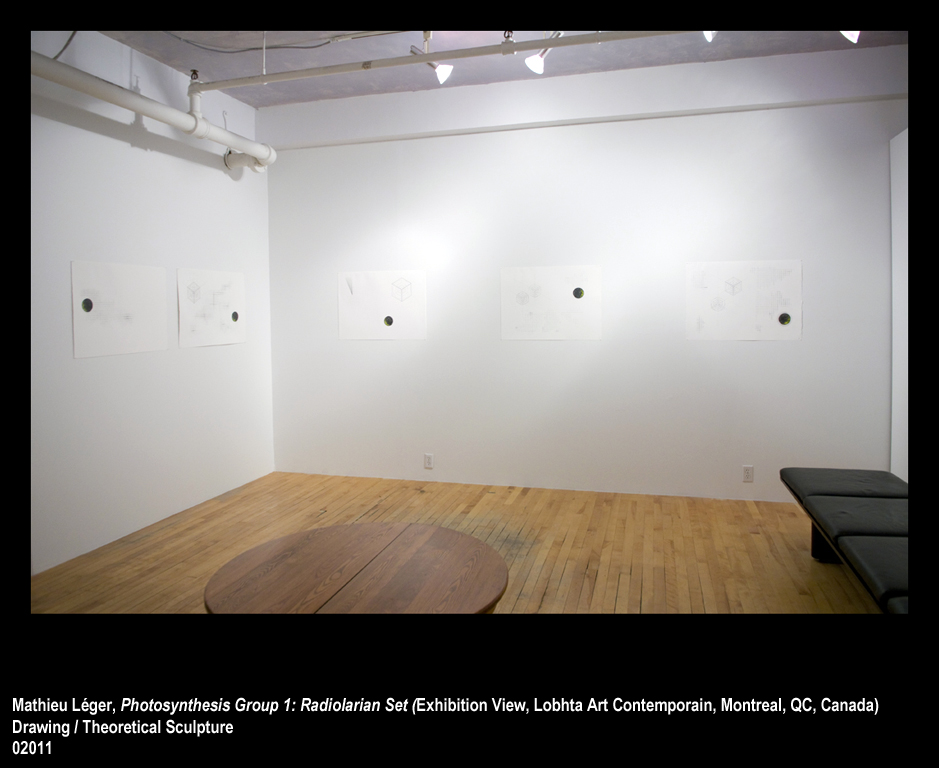 ML2011PhotoSynthesisGroup1ExhibitionView1WEB.jpg