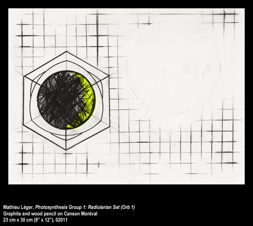 ML2011PhotoSynthesisGroup1Orb2WEB.jpg