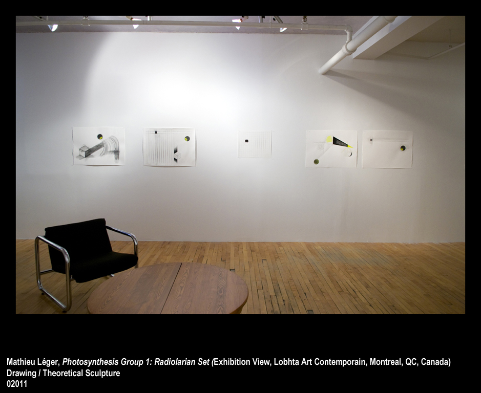 ML2011PhotoSynthesisGroup1ExhibitionView2WEB.jpg