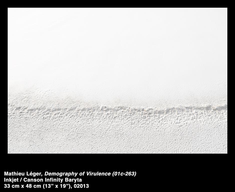 MathieuLeger2013DemographyOfVirulence01c263.jpg