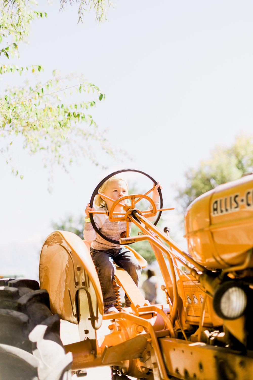Hee-Haw-Farms-46.jpg