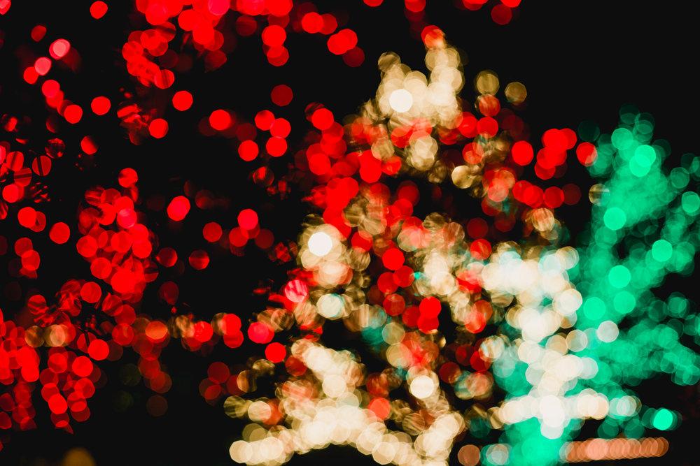 Lights-On-116.jpg