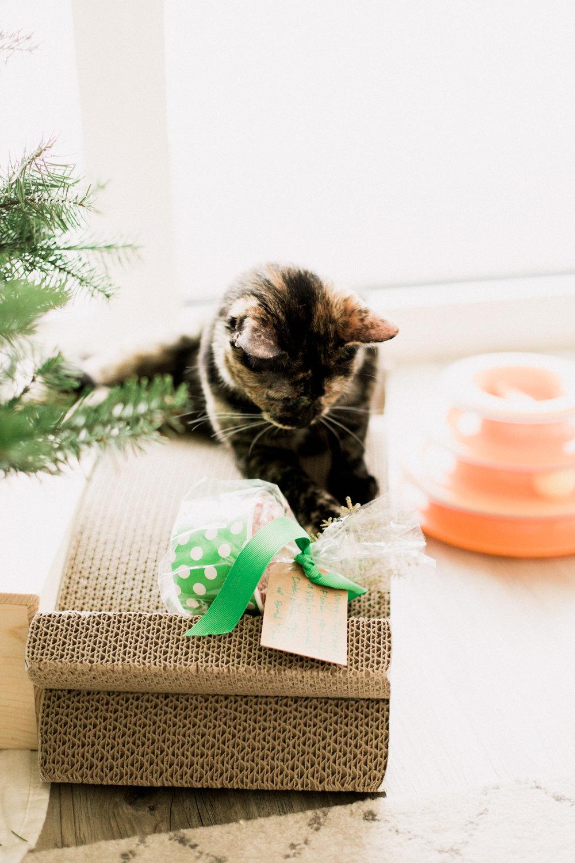 2017-Christmas-57.jpg