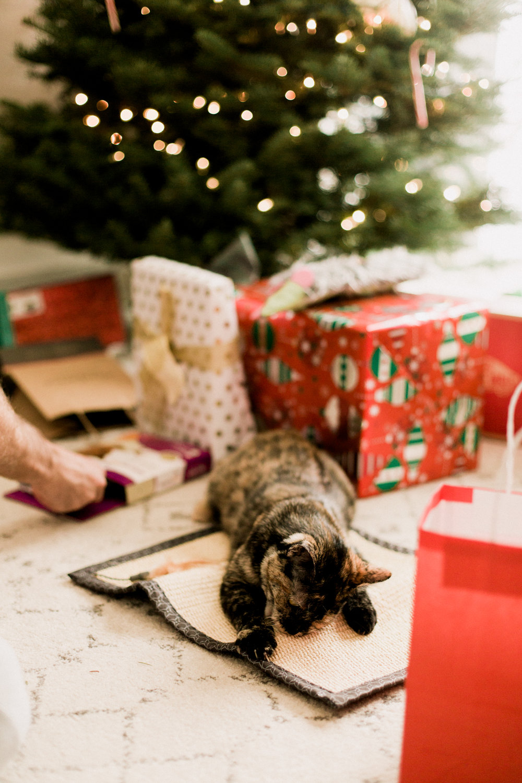2017-Christmas-91.jpg