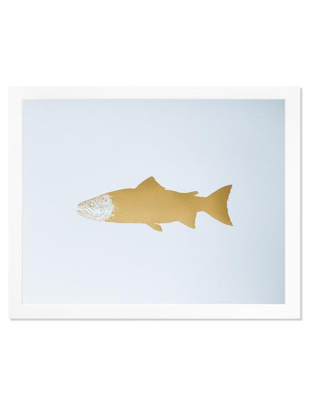 aqua-print-salmon_grande.jpg