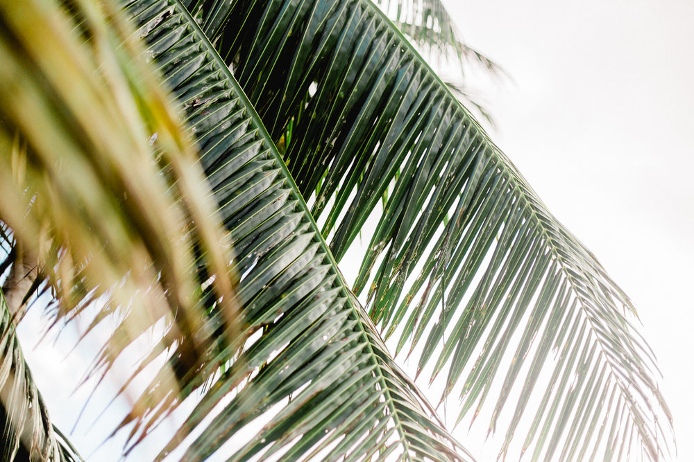 Hawaii-350.jpg