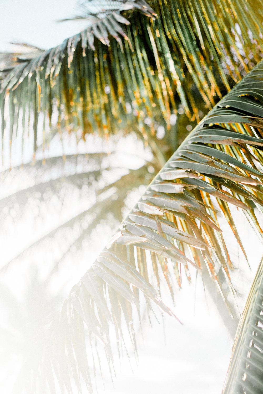 Hawaii-901.jpg