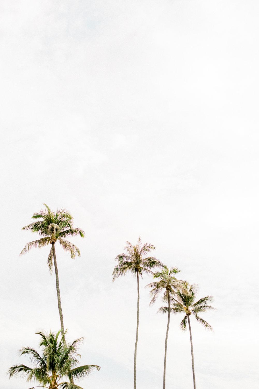Hawaii-1090.jpg