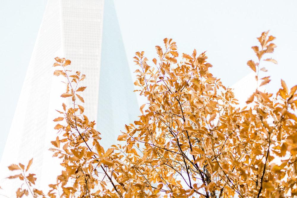 New-York-263.jpg