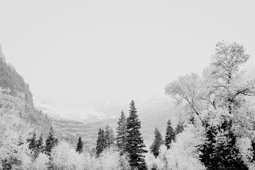 Sundance-BW-103.jpg