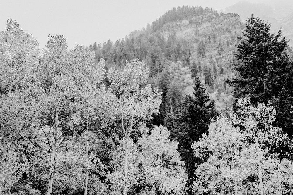 Sundance-BW-104.jpg