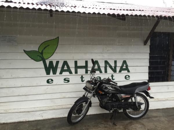 Sumatra Wahana Estate