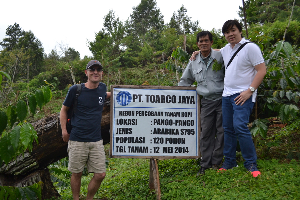 James Visits Toarco Java In Sulawesi