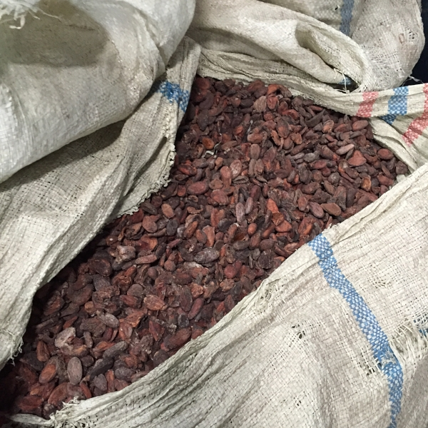 Storing Coffee Cherries
