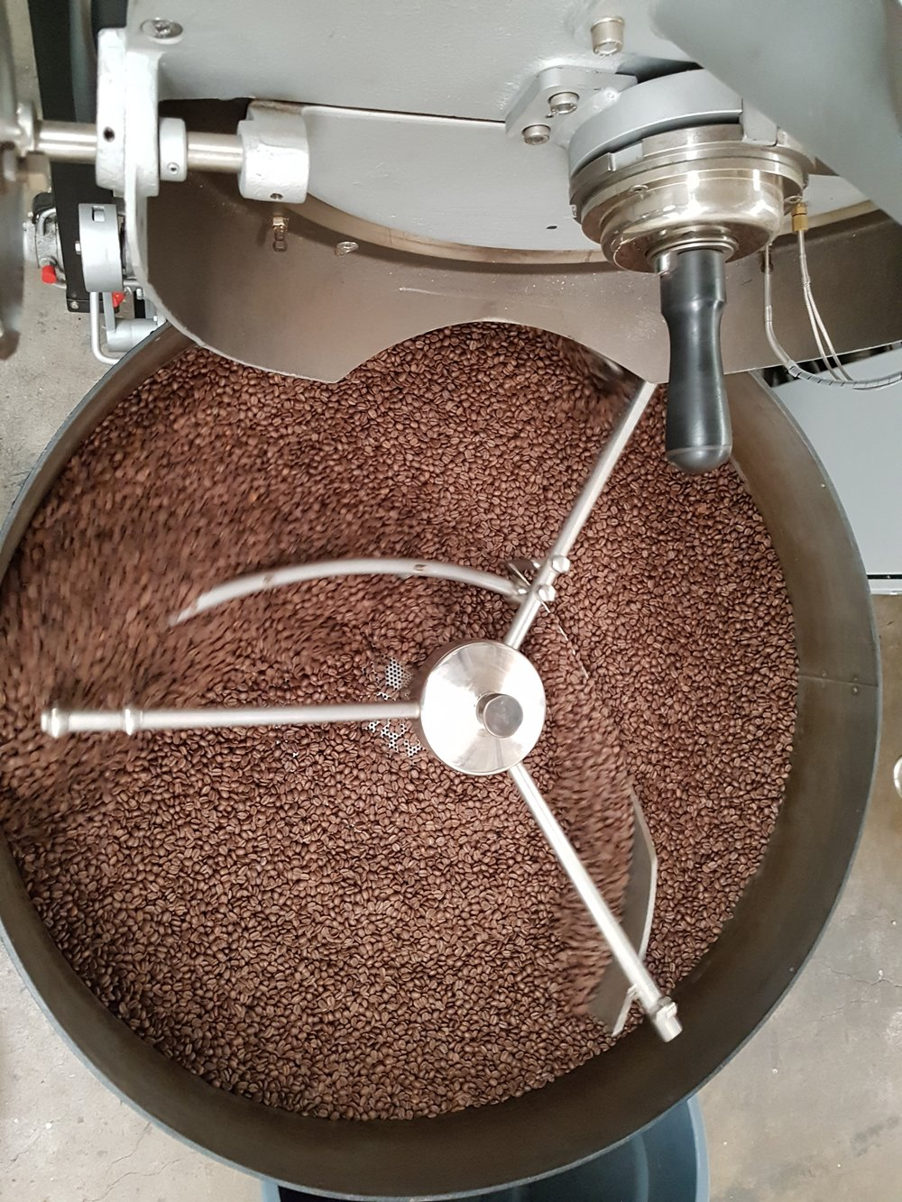 Beautiful brown bean swirl in the cooling tray
