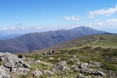 Alpine Walking  on  a Walking Eco Tour with Gippsland High Country Tours.jpg