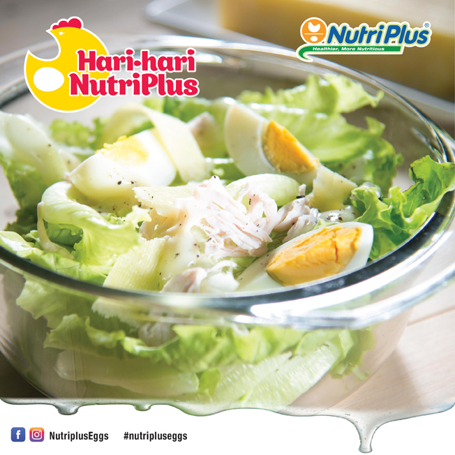 Lacto Plus Food-04.jpg