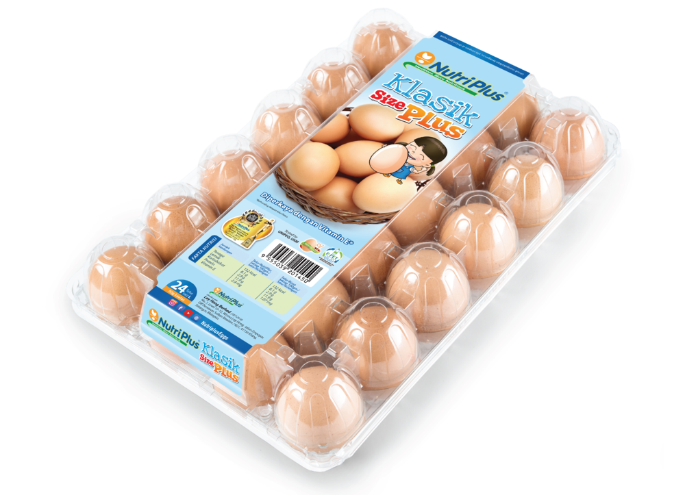 Table Eggs-07.png