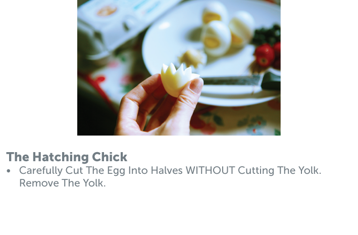 The Chicks gathering Method-06.png