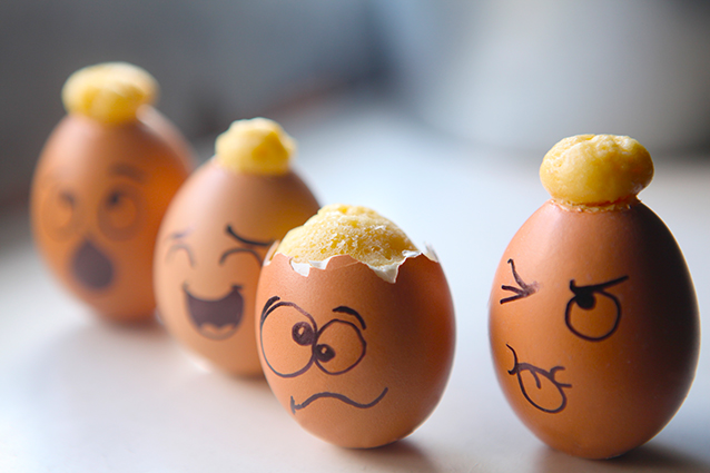 Hatching Cakes