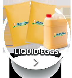 HomeBotton-liquideggs.png