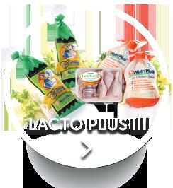 HomeBotton-lactoplus.png