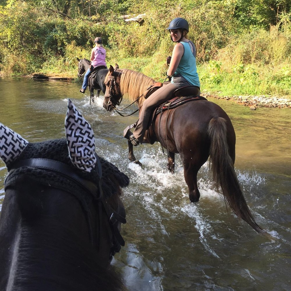 We are trail riders - Wherever you like to ride, we do too! Several trail rides each year offer chances to explore and connect.