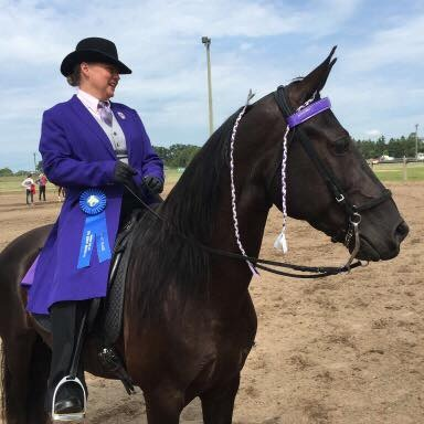 We are exhibitors - If you love the thrill of a stunning show horse or you've just wanted to try out something new with your trusted mount, we offer a number of show opportunities with something for everyone - including other gaited breeds!