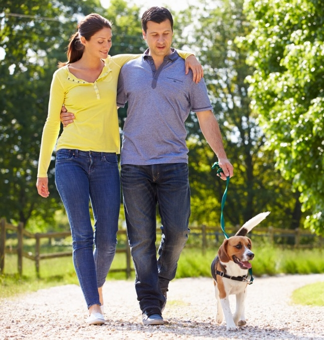 hispanic-couple-taking-dog-for-walk-in-countryside-picture-id466625271.jpg
