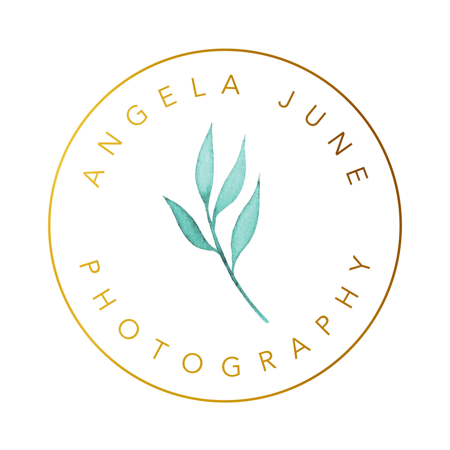 Angela June Photography