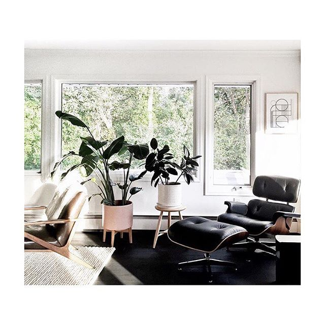 More #home #inspo courtesy of @canarygrey ... The countdown begins @brandonpiety ❤️❤️