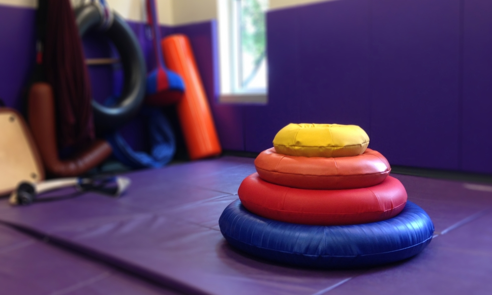 o-rings in sensory gym.jpg