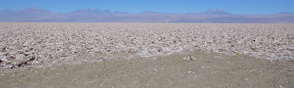Salar de Atacama, on the way to Lascar