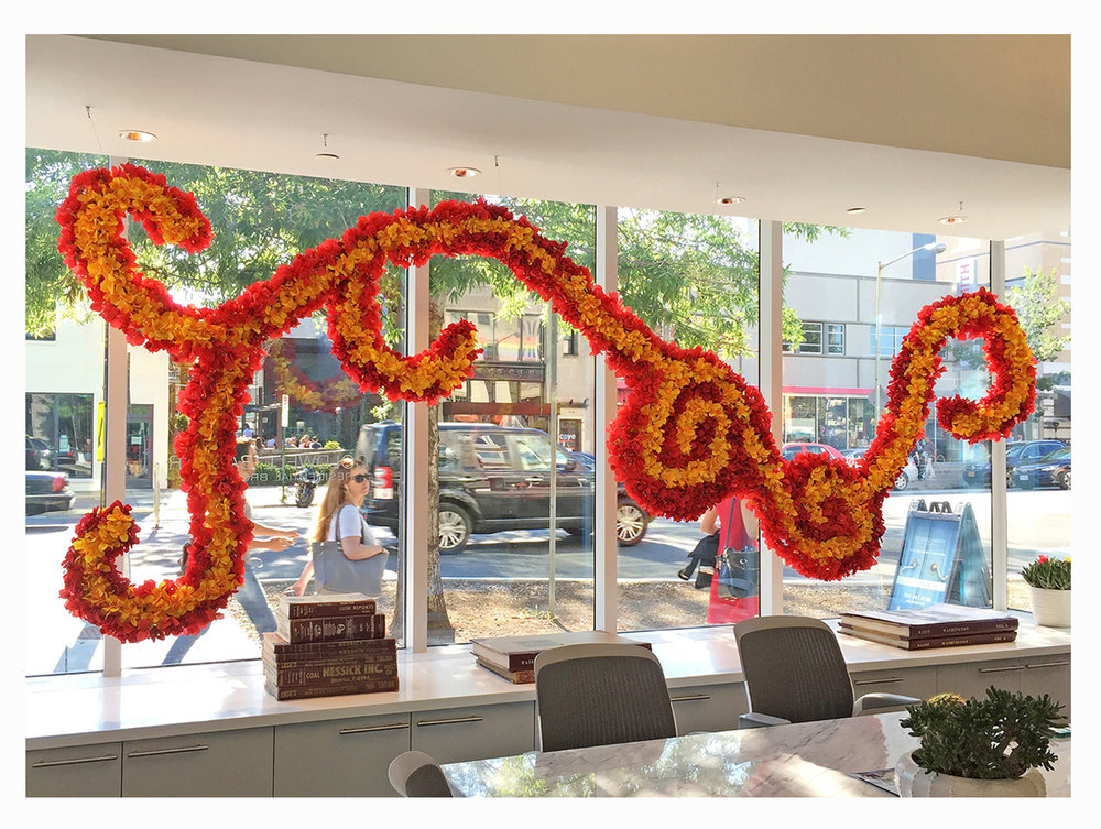 flora-DNA