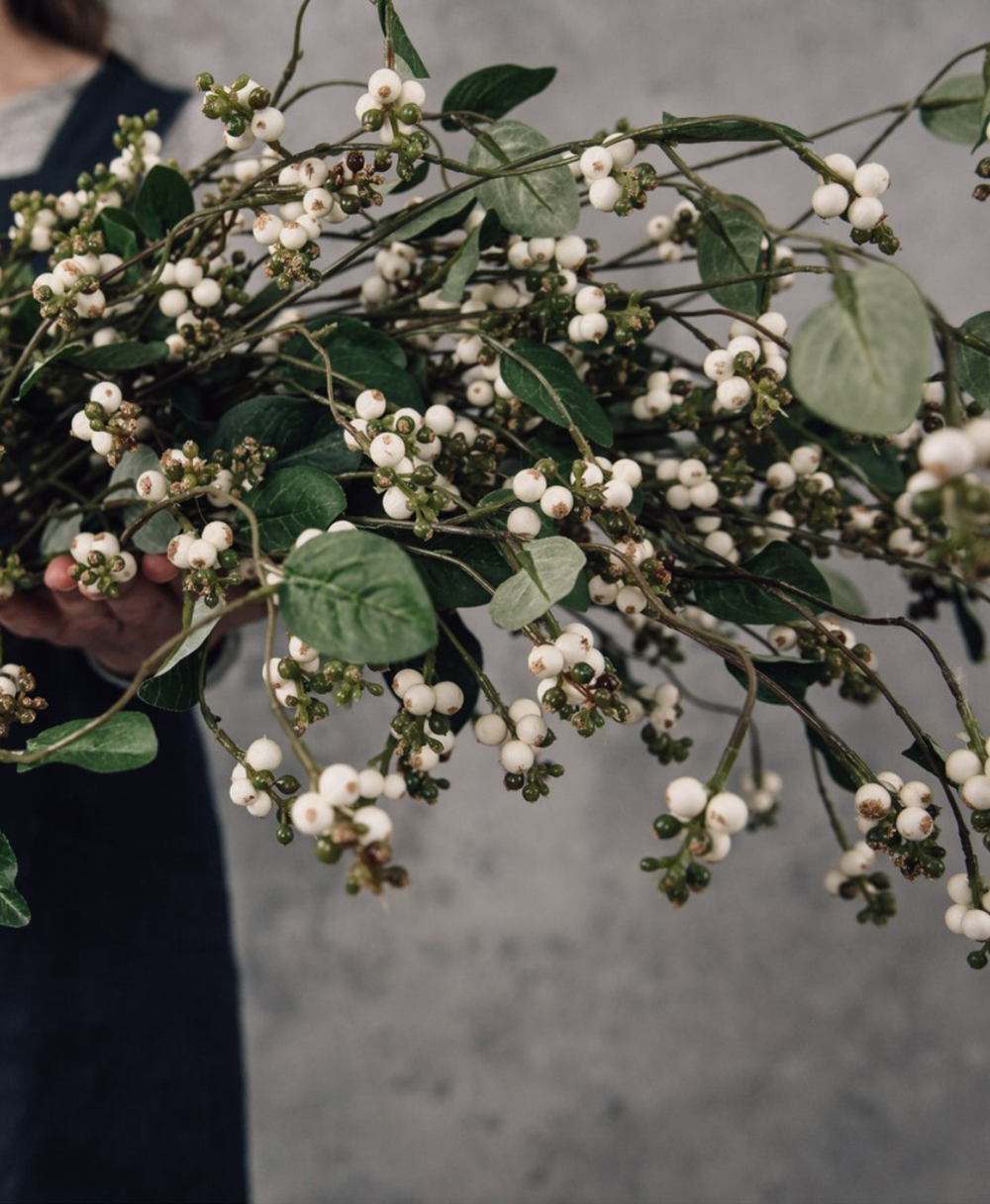 Fox Flowers  faix Snowberry.png