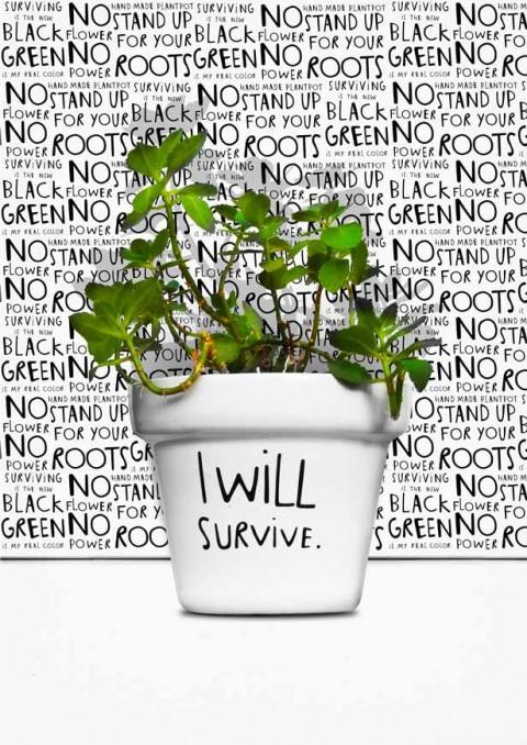 They must survive. (via  swissmiss )