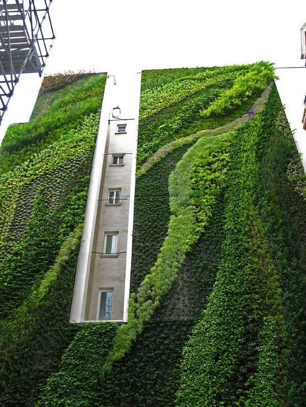 (via  I need a guide: vertical garden by patrick blanc )
