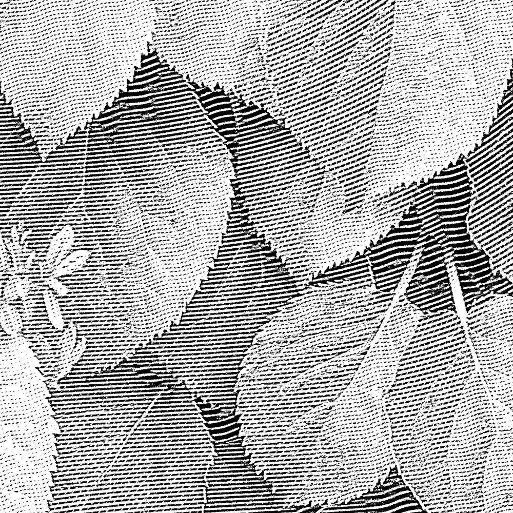 P1000235 2011-08-04 A (Leaves) 02.jpg