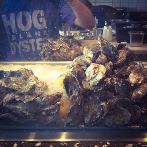 Fresh oysters at Hog Island Oyster Co.
