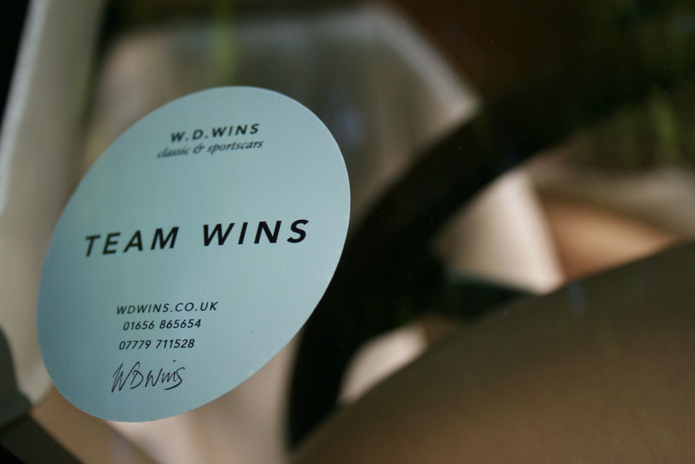teamwins sticker.jpg