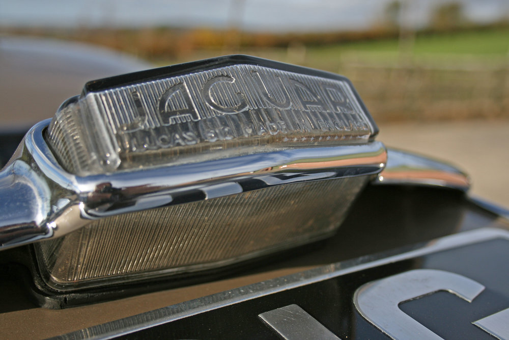 DETAIL REVERSE LIGHT.jpg
