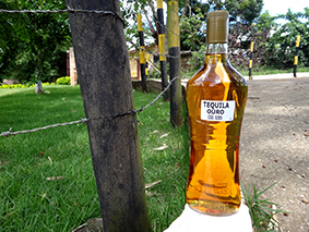 Tequila Ouro