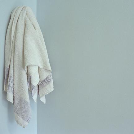 Brian's towel