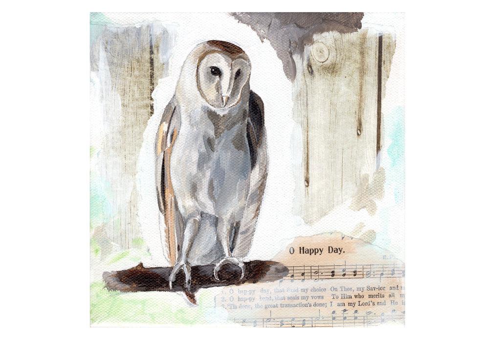 Owl-web.jpg