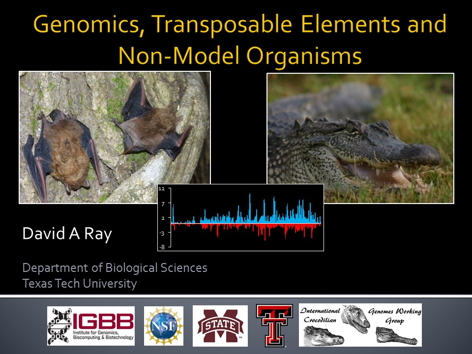 Genomics, Transposable Elements and Non-Model Organisms, TTU invited seminar | David Ray, Presenter