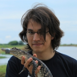 Alex Suh   Alex is an assistant professor at Uppsala University. His lab is particularly interested in studying CR1 retrotransposons, endogenous hepadnaviruses, centromere positions, and chromosomal rearrangements in crocodilians. Alex is leading the current efforts to generate de-novo assemblies using linked-read sequencing.   Lab Website